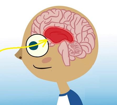 wizualizacje produktow oddziaływanie na zmysly