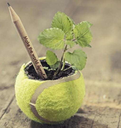 Sprout Pencil projekt ołówka i ochrona środowiska